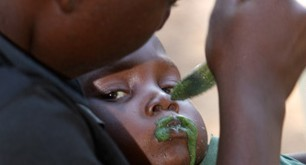 Spirulina gives major nutritional improvement for malnourished children